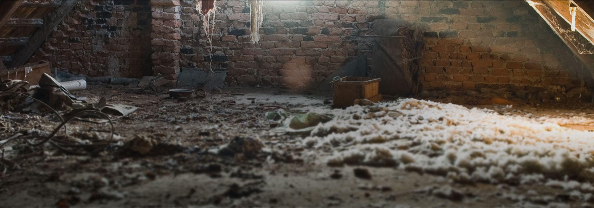 asbestos removal brisbane northside - Excel Asbestos Removal QLD