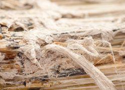 asbestos fibers