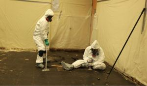 removal and disposal of floor asbestos