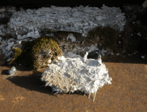 friable asbestos found in home
